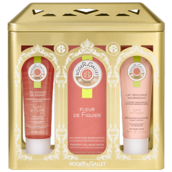 Roger & Gallet - Gift Set Rose Perfume & Lotion & Shower Gel